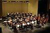 Downey Symphony100W
